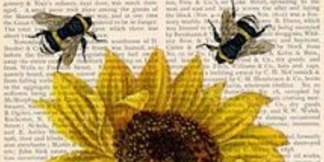 The Bee Hive: The Flying Medicine Cabinet- Postponed to end of May! tickets