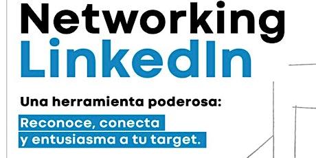 LinkedIn Networking para emprendedores. ¿Cómo conseguir clientes potenciales? entradas
