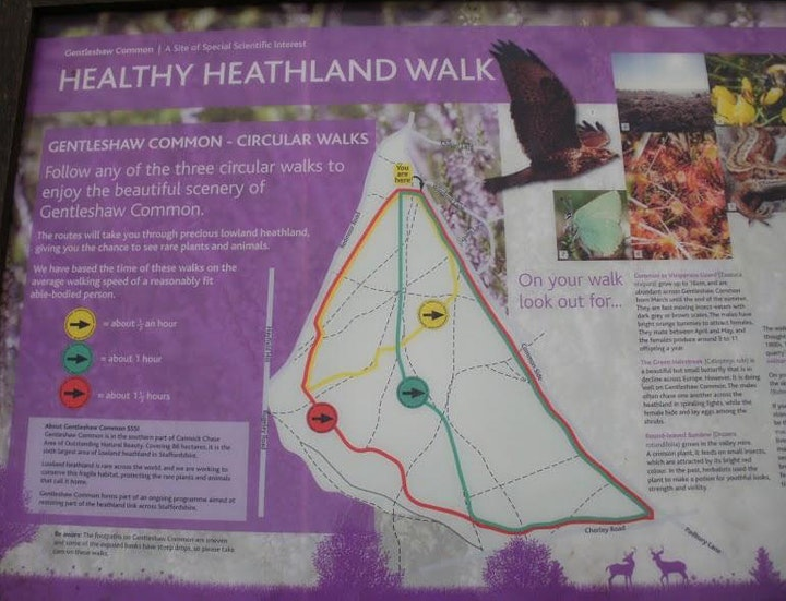Macmillan Mini Hike image