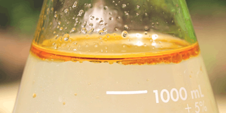 The Art if Distillation: making your own hydrosols and essential oils tickets