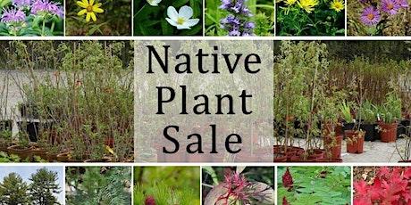 Kent Conservation District 2020 Native Wildflower Sale tickets