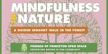 Mindfulness in Nature: A  Guided Sensory Forest Walk tickets