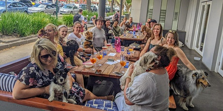 St Kilda Puppy Pub Crawl tickets