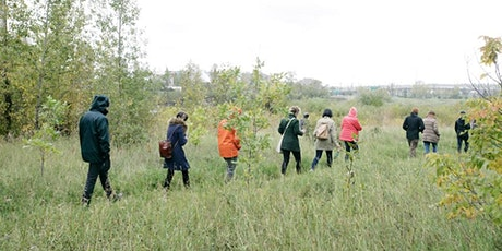 Edible and Medicinal Plant Walk in Edworthy Park tickets