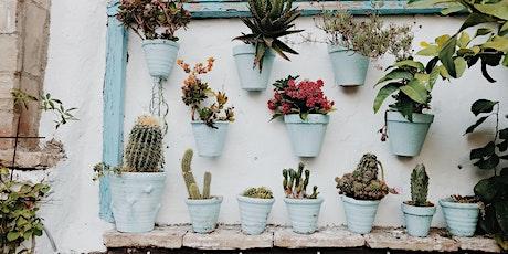 Garden Design: Small Spaces Course / Cwrs Cynllunio'r Ardd: Mannau Bach tickets