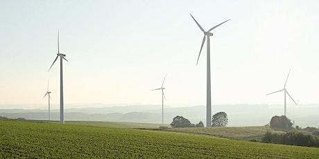 WindForS 2020 Wind Energy in Complex Terrain Workshop tickets
