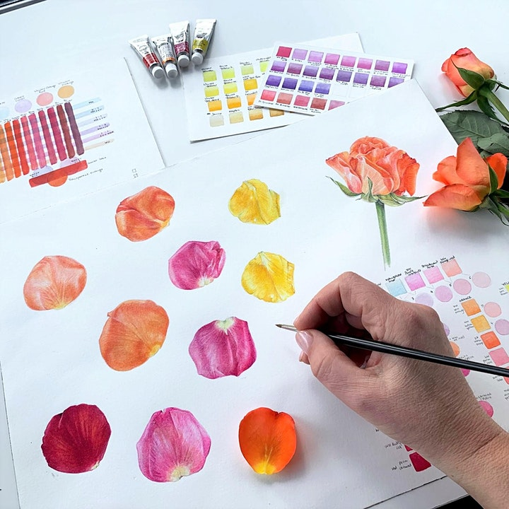 Botanical Watercolours Weekend Workshop with Shevaun Doherty @ BLOCK T image
