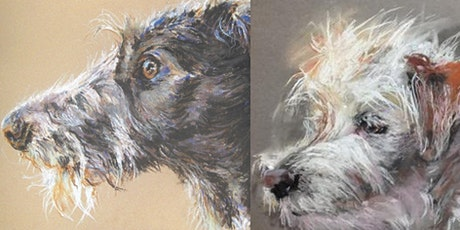 Pastel Animal Portrait for Beginners tickets