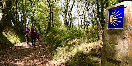 Trekkingtour Pilgerweg Camino de Santiago / Jakobsweg von Lugo-Cap Finisterre 1.-12.05.2021 (9 Trekkingtage) entradas