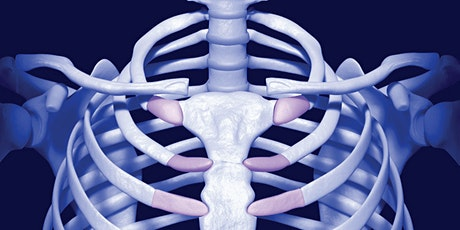 Evaluation and Treatment of the Costal Cage: An Integrative Approach tickets