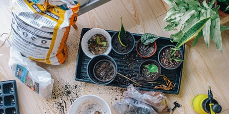 Propagating Plants tickets
