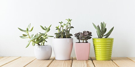 CANCELLED Full Bloom: Planters and Potting Workshop - Willowbrook tickets