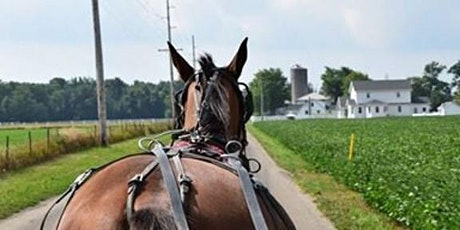 Day Trip to Amish Country-Arts, Amish and Adventure tickets
