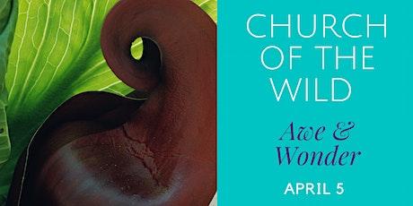 NOW ONLINE - Church of the Wild - Awe & Wonder tickets