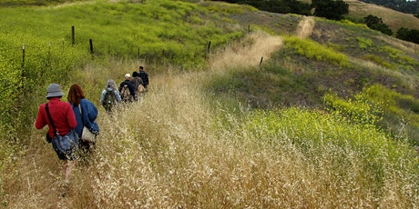 Wild Edible Plants Foray May 17 tickets