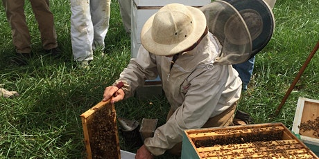 April Beekeepers Meeting, Ask the Experts tickets
