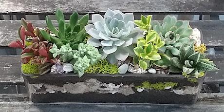 DIY Flower Design Workshop- Succulent Gardens tickets
