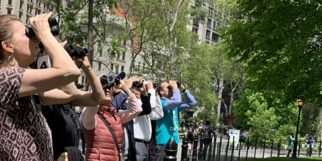 Bird Watching in Madison Square Park tickets