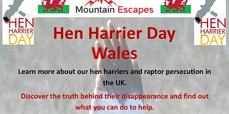 Hen Harrier Day Wales 2020 tickets