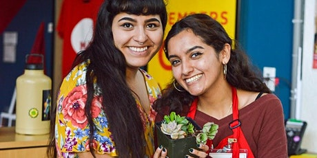 Make Night: Succulent Arrangements | Volunteer with the MAH tickets