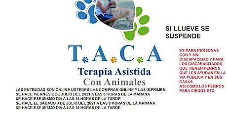 TERAPIAS ASISTIDAS CON ANIMALES entradas