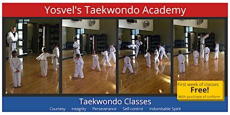 Taekwondo Class tickets