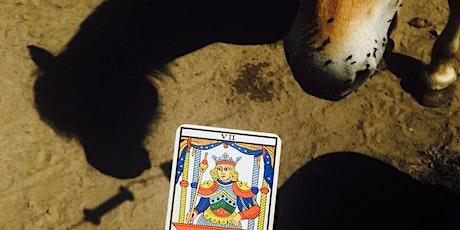 """Atelier-conférence """"Le Tarot au galop!"""": apprendre à lire le Tarot en 78min! billets"""
