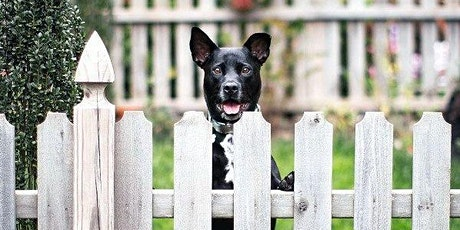 Fences, Ditches & Dogs tickets