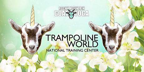 Unicorn Yoga - April 5th (Trampoline World Gymnastics) tickets