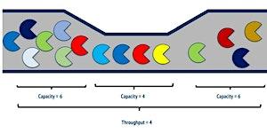 §VIRTUAL§ - Throughput Accounting for Agile Coaches -...