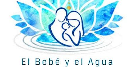 Seminario  de la Disciplina  El Bebé y el agua entradas