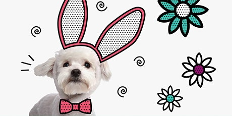 Easter Bunny Pet Photo Night tickets