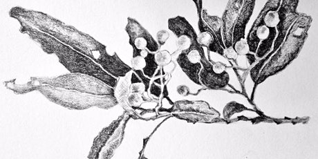 Observational Drawing Workshop with Jackie Cavallaro tickets