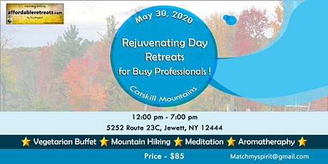 Rejuvenating Day Retreat for Busy Professionals ! tickets