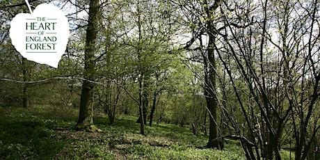 EXCLUSIVE Friends of the Forest Event - Guided Walk with Head Forester Stephen tickets