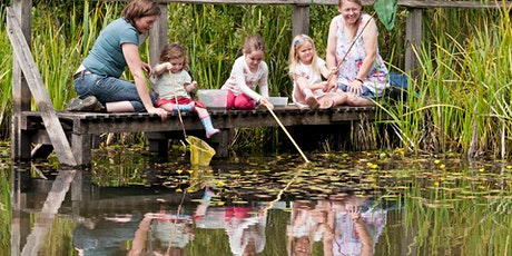 WILDLIFE WATCH - POND DIP AND NATURE HUNT tickets