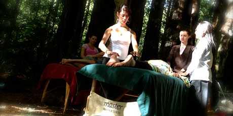 Reiki in the Redwoods ~ Level 2 Training tickets