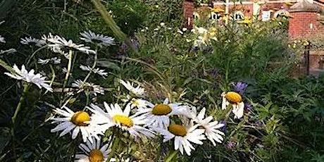 Basic Garden Design tickets