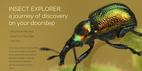 Insect Explorer: An Introduction to Entomology tickets