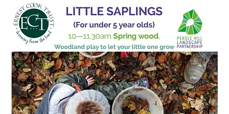 Postponed LITTLE SAPLINGS - Spring Wood, Whalley - minibeast theme tickets