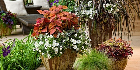 Create Your Own Shade Planter - June 8 - CANCELLED DUE TO COVID-19 VIRUS tickets