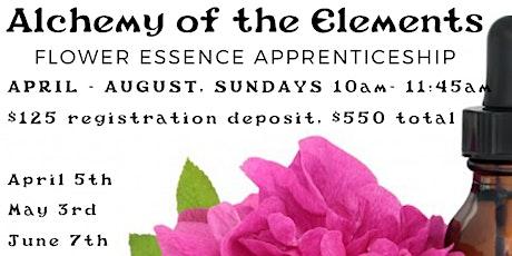 Alchemy of the Elements: Flower Essence Apprenticeship tickets