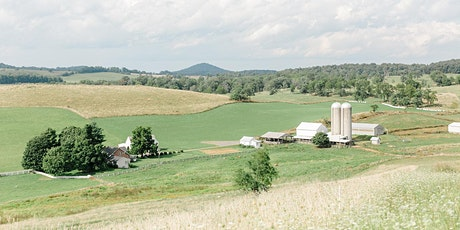 Behind the Scenes Farm Tour at Creambrook | July 18th tickets