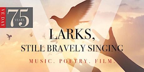 Larks, Still Bravely Singing tickets