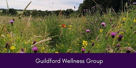 Guildford Wellness Meet up Group  tickets