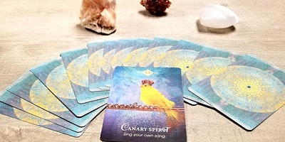 The Basics of Oracle Cards!