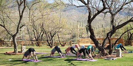Mother's Day  Sip n Stretch at Bloomingcamp Ranch tickets