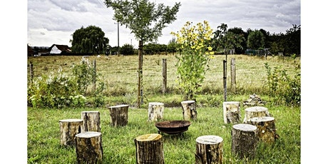 Introduction à la Permaculture - éthique et principes billets