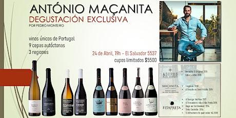 Degustación Vinos de Portugal - Enólogo António Maçanita entradas