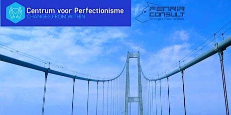 Geboeid door perfectionisme - Infosessie tickets